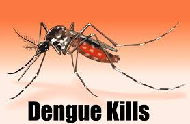 AYUSH Medicines Developed for Mosquito-Borne Diseases like Dengue
