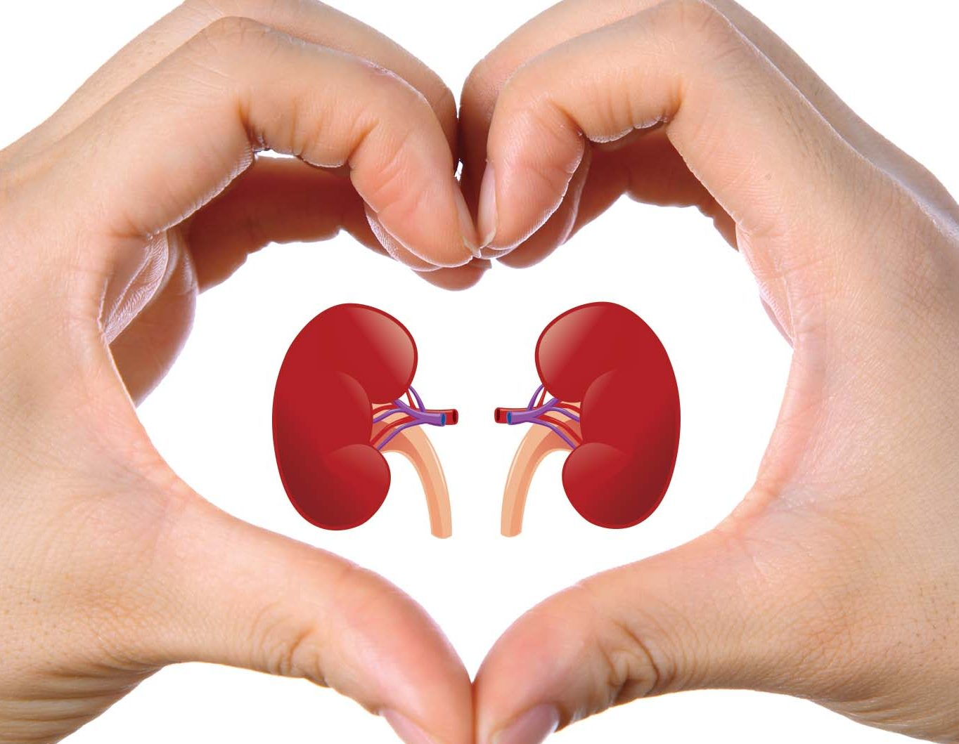 HAVE CHRONIC KIDNEY DISEASE YOU CAN BE AT HIGHER RISK OF DEVELOPING CANCER SAYS A STUDY