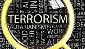 Terrorism is a global concern that demands global attention: Vice President