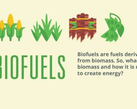 International Conference on Sustainable Biofuels 2018